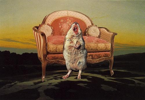 La soprano del regno dei topi