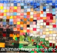 SPARSA-ANIMAE-FRAGMENTA-RECOLLIGAM